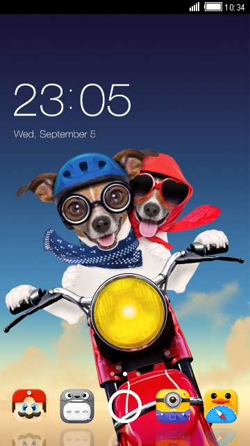 Funny animal theme: Puppy wallpaper