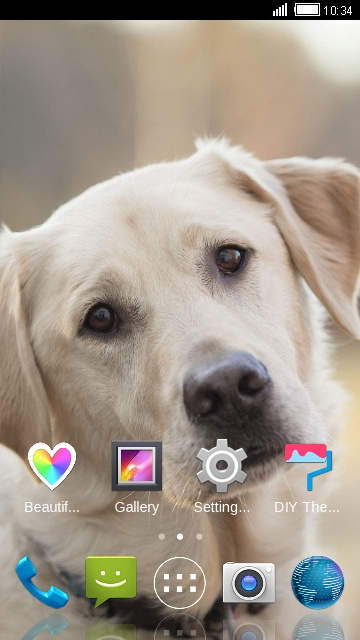 Theme for iBall Andi 5N Dude: Puppy Wallpaper
