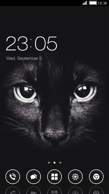 Animal Theme Black Cat Wallpaper