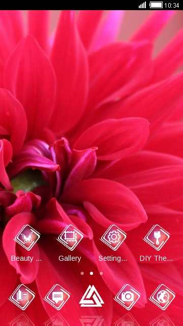 Red Pure Flowers Theme