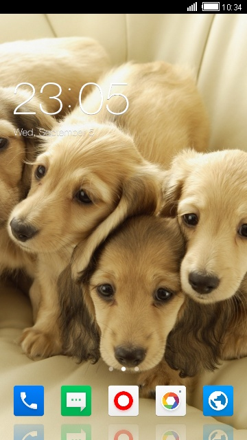 Theme for Videocon V1456 Pets Wallpaper