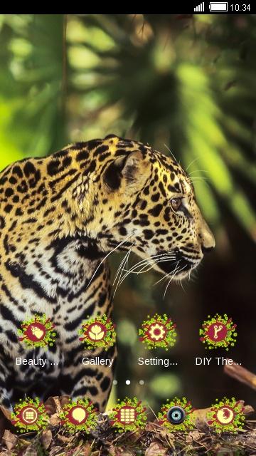Animal king Lepoard