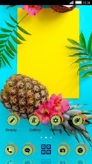 Summer Holiday fruit Pineapple