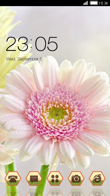 Nature Theme Pink Flower Wallpaper