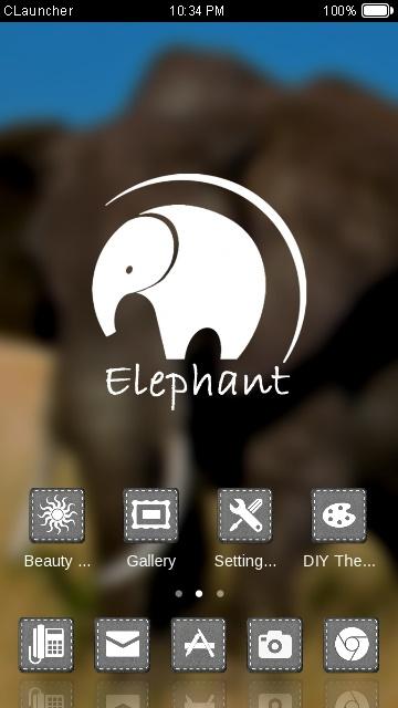 ELEPHANT THEME