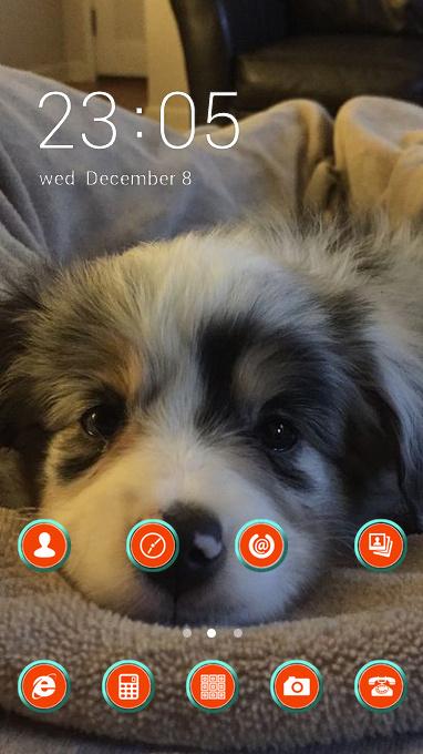 hairy puppy theme
