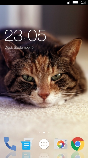 Theme for Spice Metal Cute Cat Wallpaper