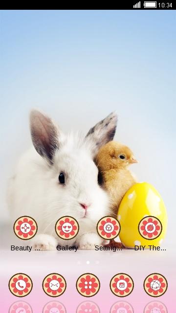 Animal Launcher Theme Rabbit And Chick Wallpaper