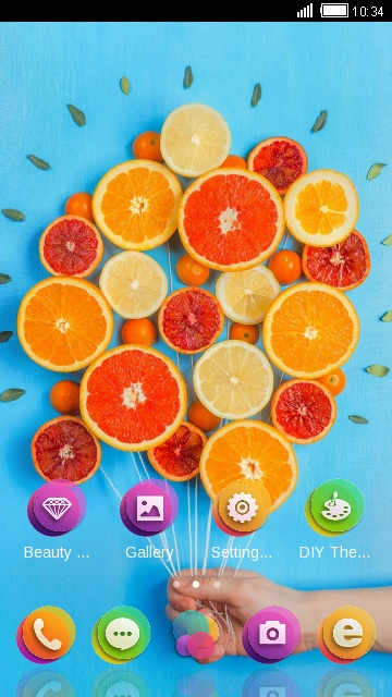 Lemon and Orange Food