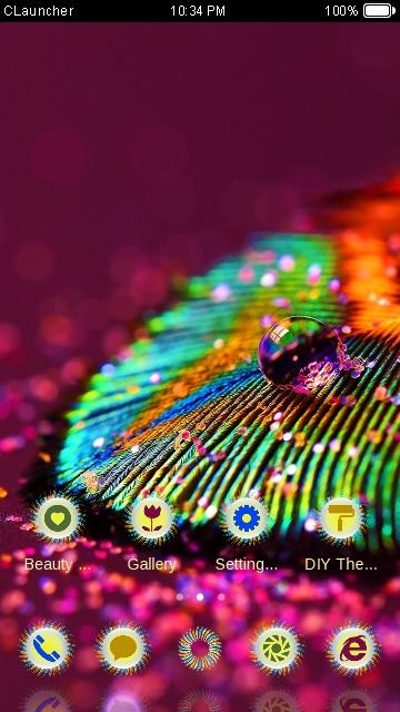Macro feather