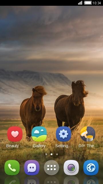 Wild Nature Animal Horse
