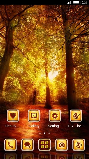 Forest Theme Amazing Sunset Wallpaper