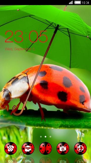 ladybug with umbrell