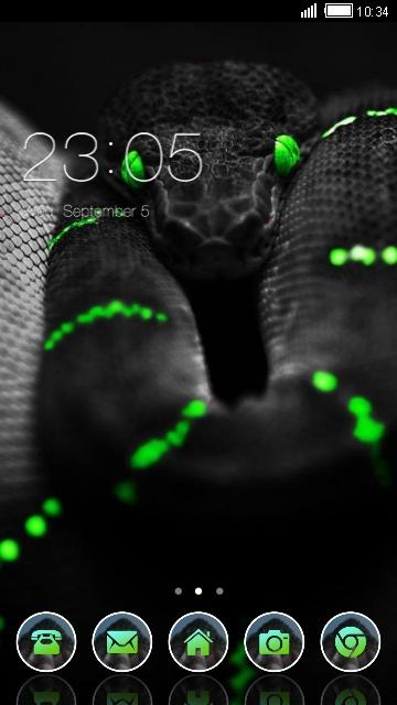 Black Snake_VJ