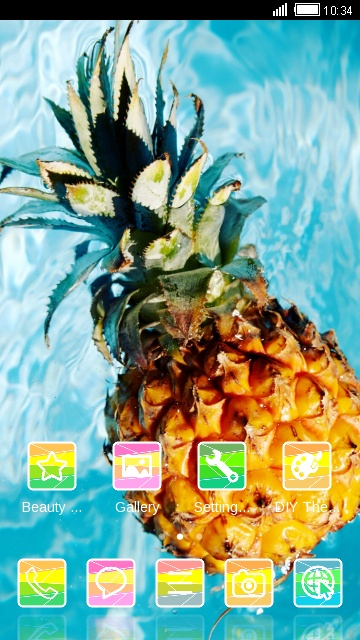 Fruit Theme Tropical Pineapple
