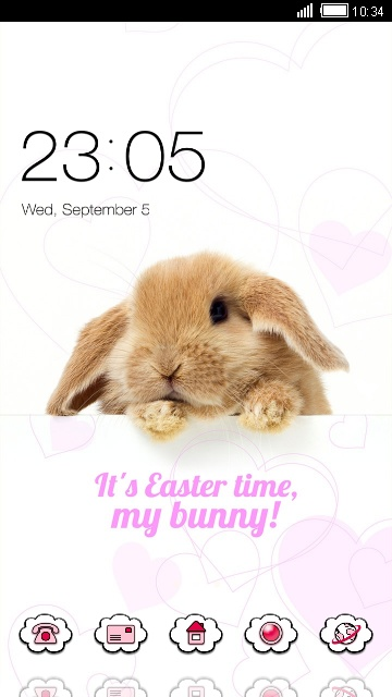 Cute Rabbit Wallpaper Beauty Animal Theme