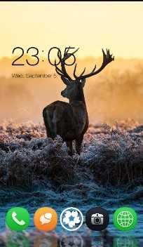 Nature Animal : Life of Deer