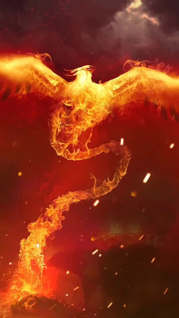 Flaming Phenix Live Wallpaper