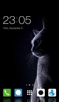 Cute Cat Theme for Vivo V7+