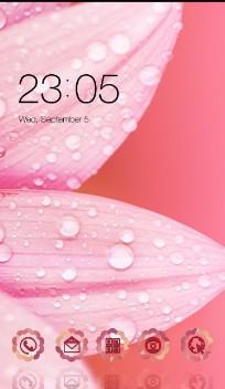 Pink Flower theme