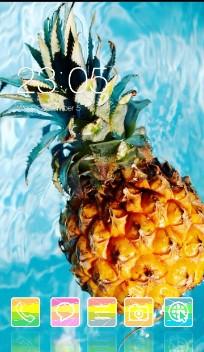 Fruit Theme Tropical Pineapple