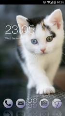little cat CLauncher