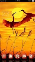 Dancing Cranes 2