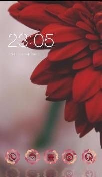 Red Flower Rose petals