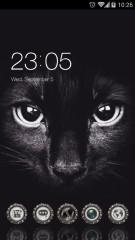 Black Cat Cool Evil Theme