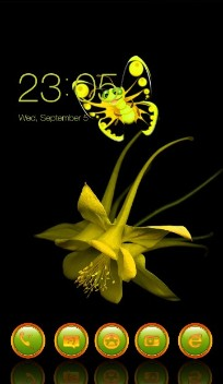 Yellow flower and bu