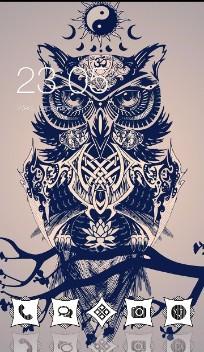 Vintage Animal Theme: Owl  art