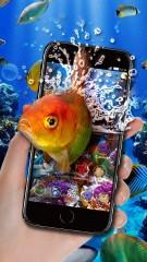 Real Aquarium Life