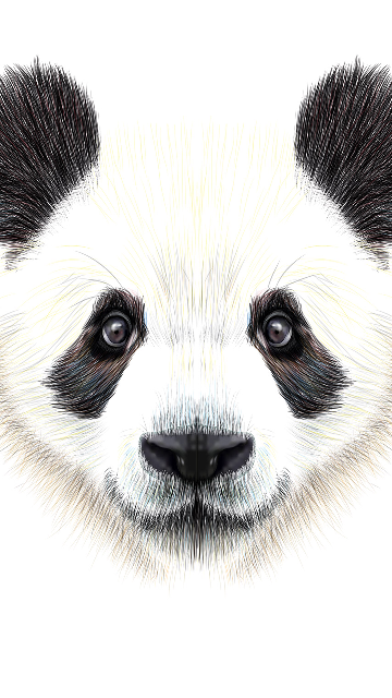 Handraw Panda