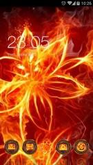 fiore di fuoco