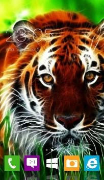 windows 9 tiger