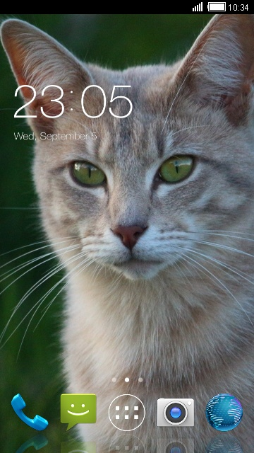 Theme for Intex Cloud 4G Smart Cat Wallpaper