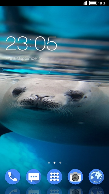 Themes for Nokia 6: Seal Wallpaper HD