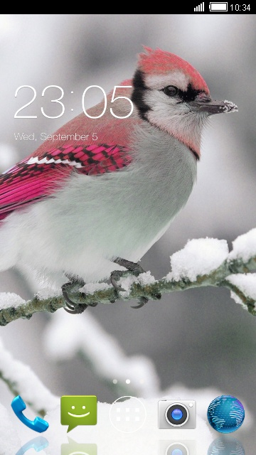Theme for iBall Andi4-B2 IPS Birds Wallpaper
