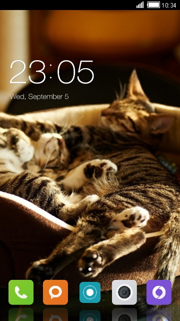 Theme for Xolo 8X-1000 Cat Wallpaper