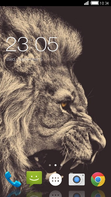 Theme for Spice XLife 480Q: Lion Wallpaper