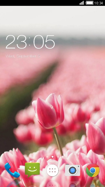 Theme for Spice XLife 431q: Tulip Wallpaper
