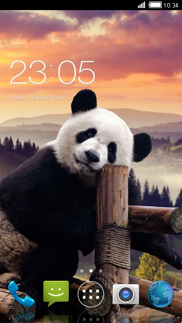 Theme for Micromax Bolt Q324 Panda Wallpaper
