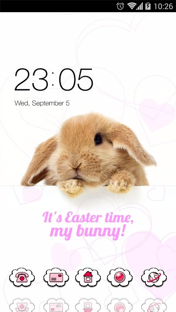 Cute Rabbit Wallpaper Beauty Animal Theme