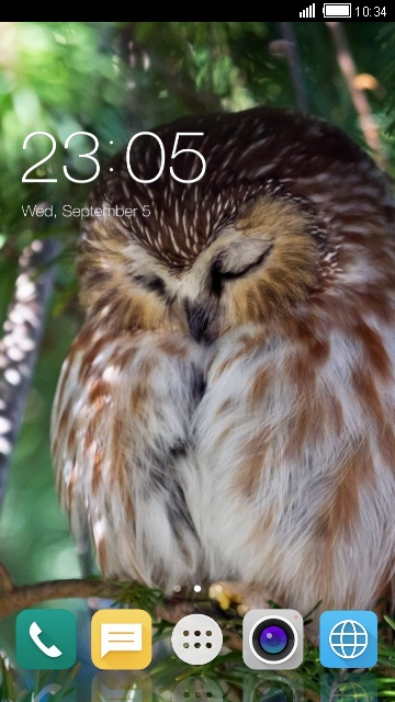 Theme for iBall Vogue 2.6c 3D Owl Wallpaper