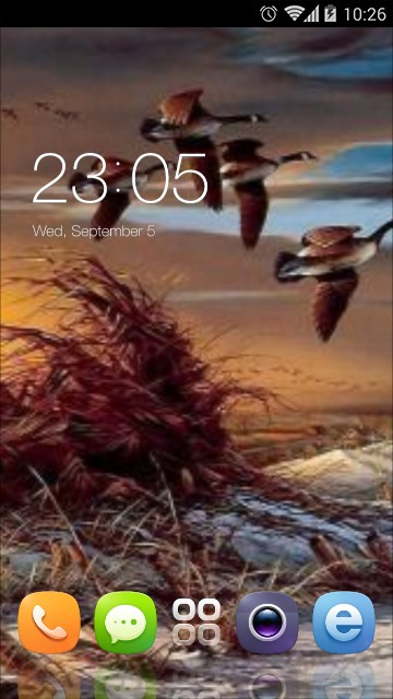 Gemstone APP Lock Theme Owl Pin Lock Screen