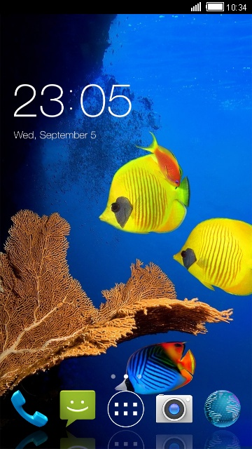 Reef Fish Wallpaper for Micromax Canvas MAd A94