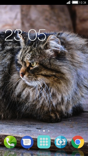 Theme for Xolo Q1011 Cat Wallpaper