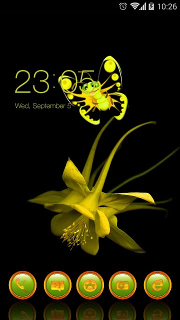 Yellow flower and bu