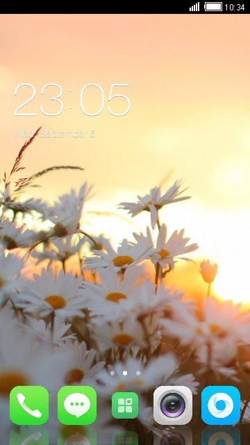 Theme for Micromax X111 Daisy Flower Wallpaper