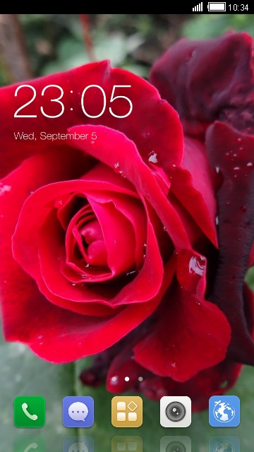 Theme for Micromax A60 Rose Wallpaper